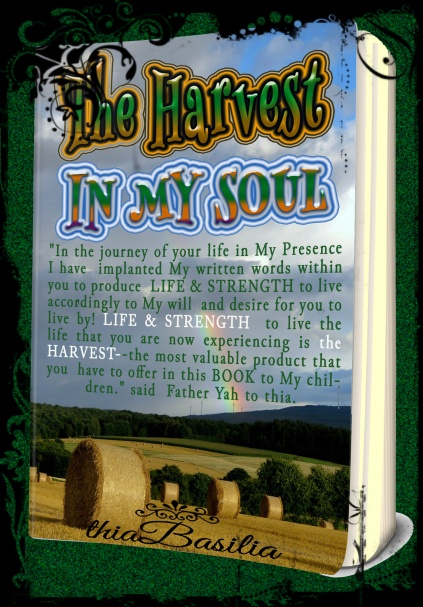 book-coverpxlr-the-harvest-in-my-soul-on-035-mock