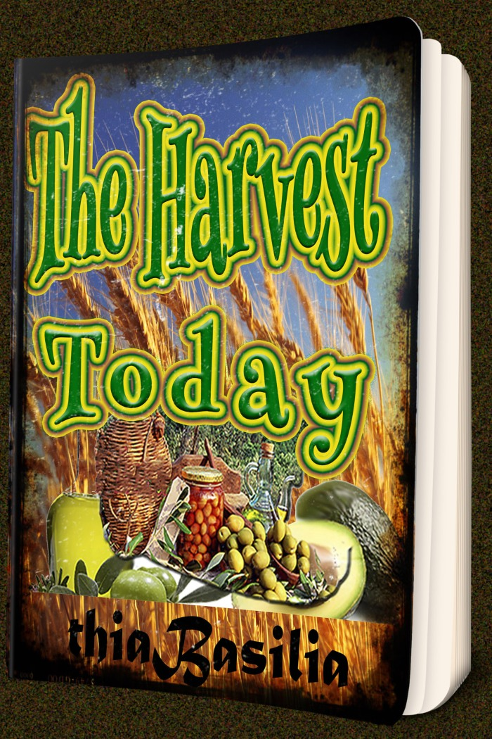 book-coverrusticpixlr-the-harvest-today_on-mock-035