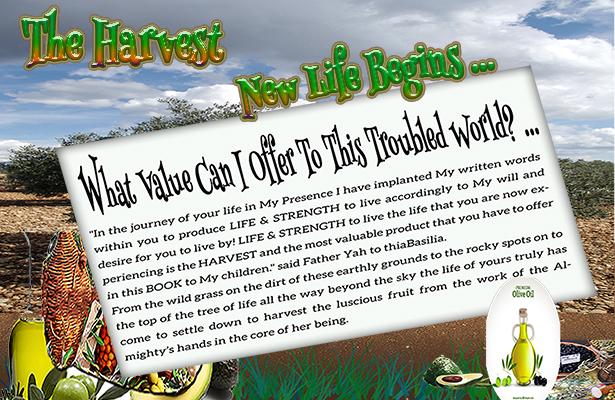 000000000000_1-the-harvest-new-life-beginslanding-page