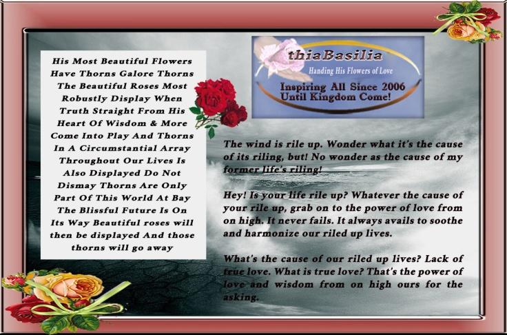 01 Flowers Thorns Wind Display